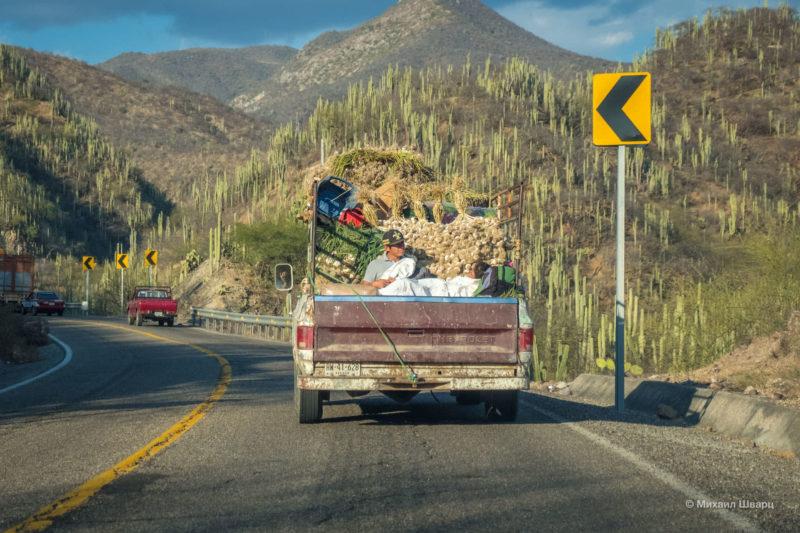 Как мы арендовали авто в Мексике в Оахаке 9