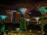 Как купить со скидкой входные билеты в Сингапуре? 5