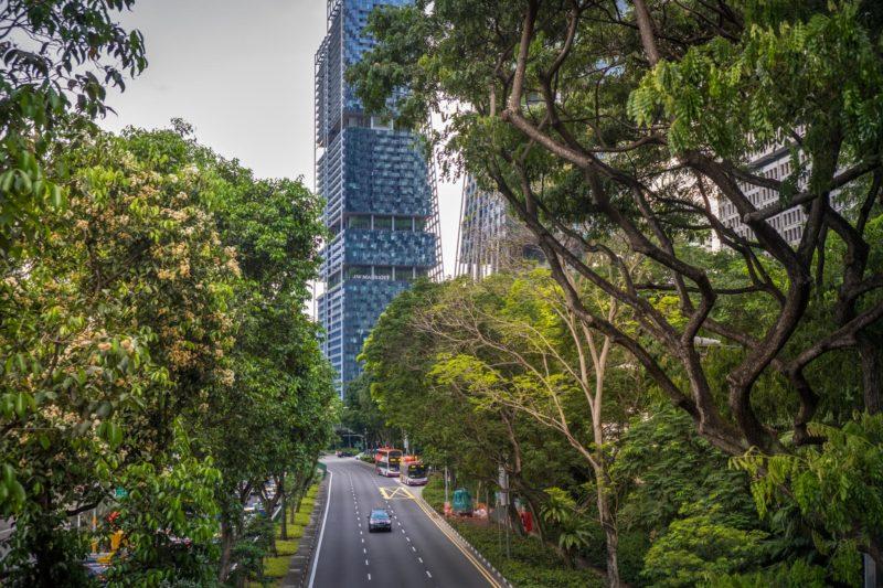 20 вещей, которые меня поразили в Сингапуре 9
