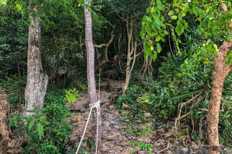 Подъем на смотровую Ko Sam Sao