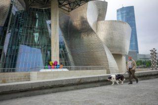 Выгул собак в Испании