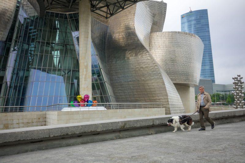 Собака в Бильбао