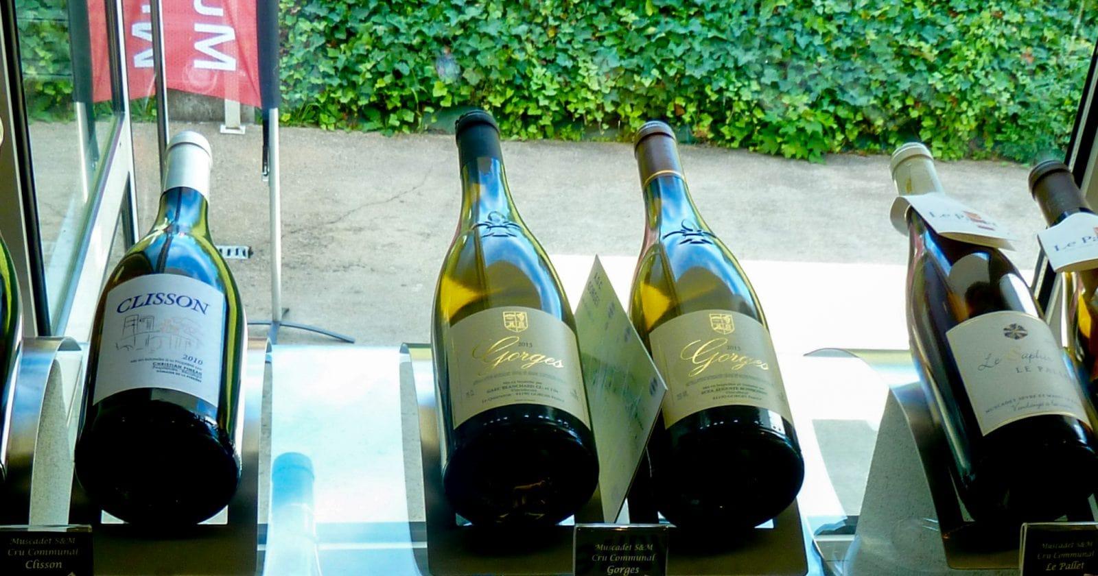 Вино Muscadet